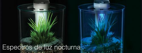filtro y luz marina 360 5