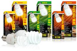 Bombillas de luz para terrarios desérticos