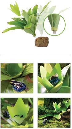 planta bromelia smart plant exoterra 0