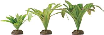 planta bromelia smart plant exoterra 1