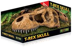 refugio craneo fosil t rex exoterra 0