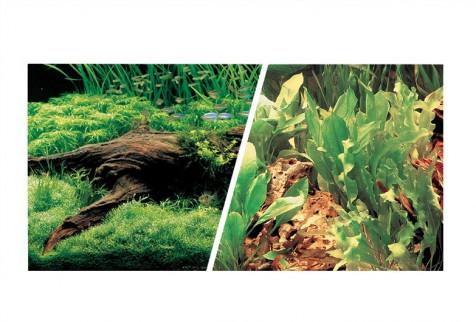 Fondo Decorativo Plantas/Plantas MARINA 7,6m