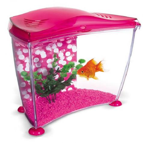 Acuario rosa de 10 L para agua fría MARINA