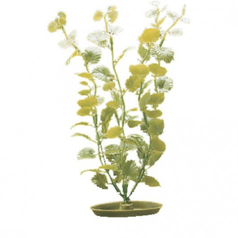 Plantas Plasticas Cardamine MARINA