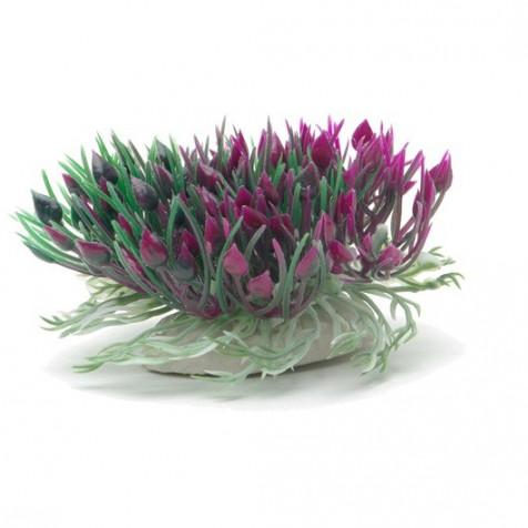 Plantas Plasticas con Ventosa Hearts MARINA 12,5 cm_12087