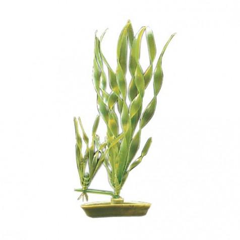 Plantas Plasticas Hygropila MARINA