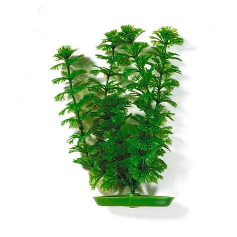 Plantas Plasticas Ambulia  MARINA