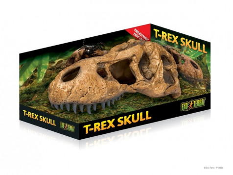 Refugio Cráneo Fósil T-Rex EXOTERRA_PT2859