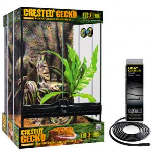 Kit de Iniciación para Gecko