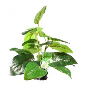 FLUVAL DECOR Planta Samolus/base 7cm_PP1622