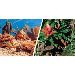 Fondo Decorativo Aqua Decor Bromelia/Desierto 30 cm x 15m_11719