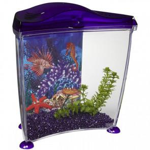 Acuario púrpura para agua fría MARINA