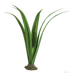 Planta para terrario tropical Pandanus Exo Terra