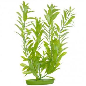 Plantas Plasticas Hygrophila MARINA