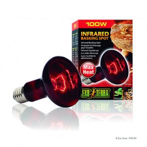 Bombilla Infrared Basking Spot EXOTERRA 100W