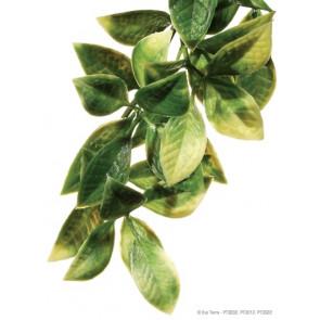 Planta Plástica Mandarin EXOTERRA
