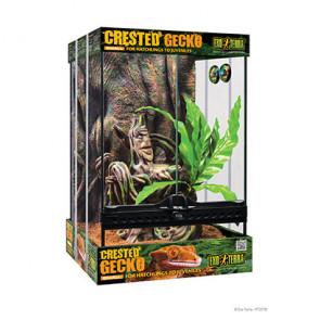 Terrario Gecko Crestado EXOTERRA