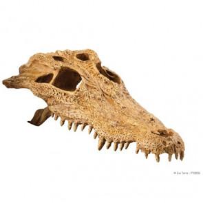 Refugio Cocodrilo Skull EXOTERRA_PT2856