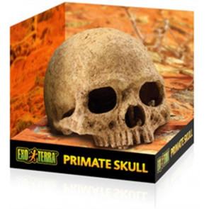 Refugio Primate Skull EXO TERRA