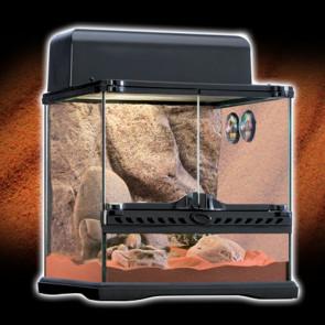 Terrario para reptiles de ambiente áridos