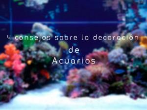 Consejos sobre la decoración de acuarios
