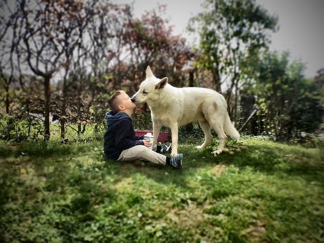 Día de los enamorados con nuestra mascota